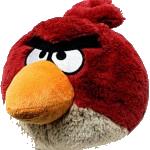 angry identity bird