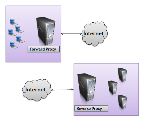 Forward and Reverse proxy servers