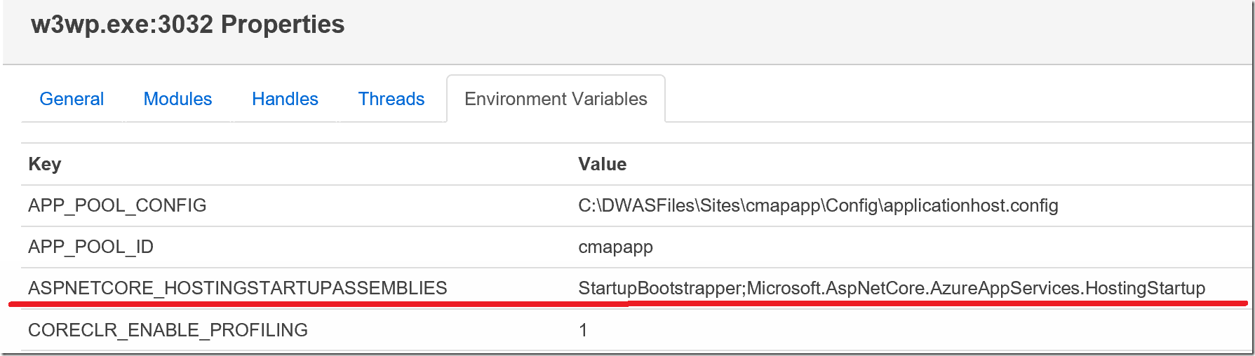Azure App Service Worker Process Environment Variables
