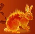 Rabbints, Campfires, Python